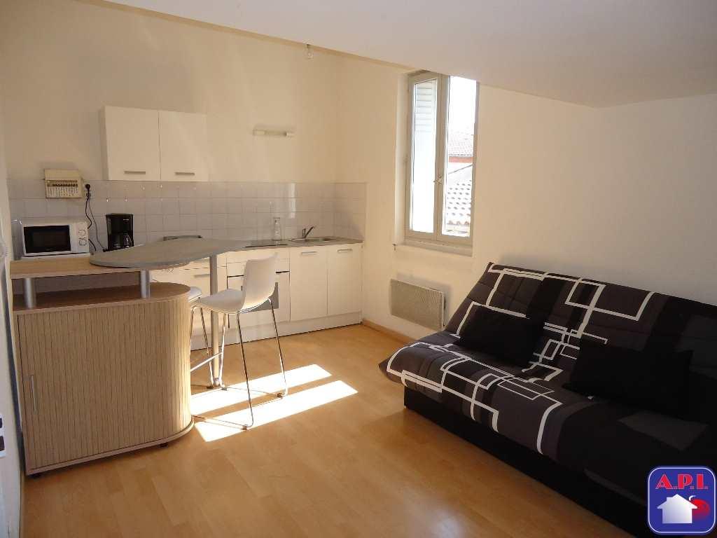 location appartement 1 pièces PAMIERS 09100