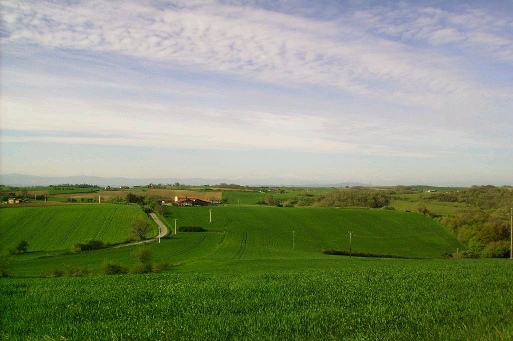 vente terrain CINTEGABELLE CINTEGABELLE 31550
