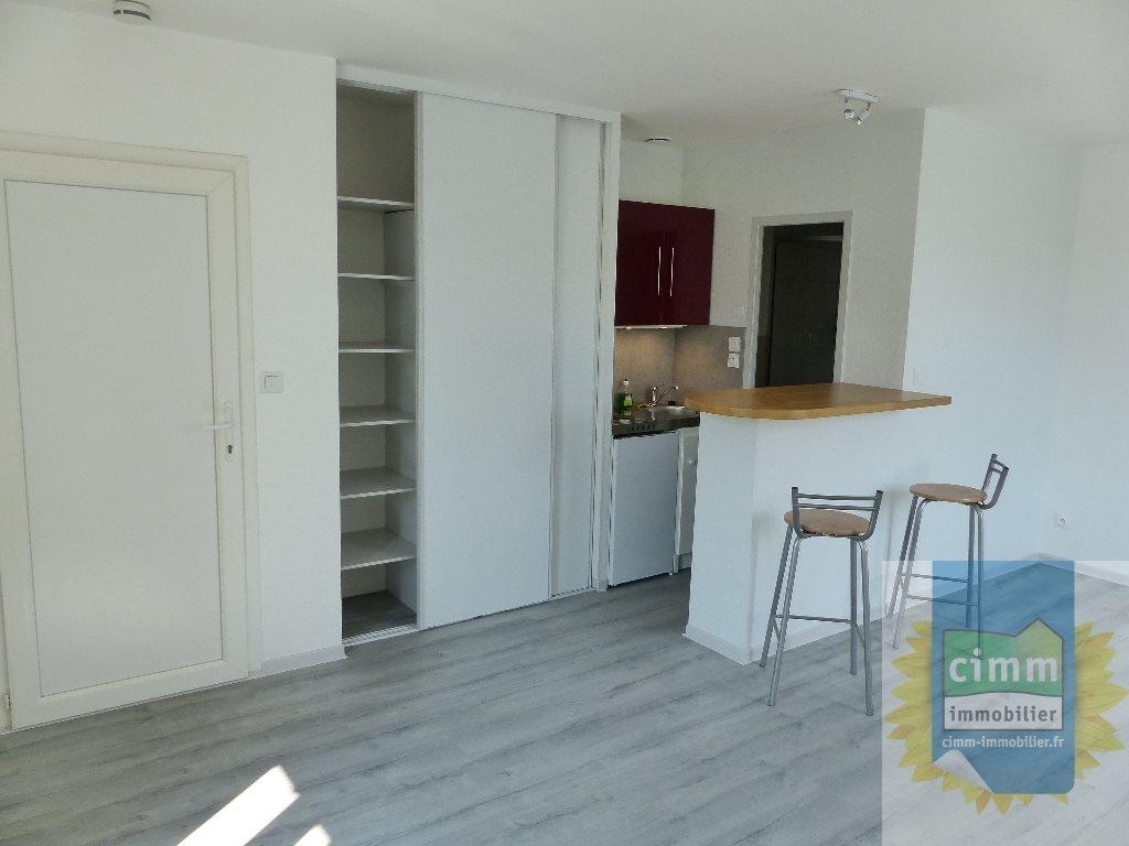 location appartement 1 pièces GENLIS 21110