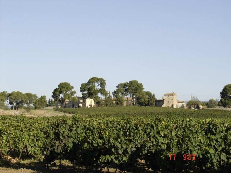 vente maison/villa 1 pièces LANGUEDOC-CARCASSONNE 11000