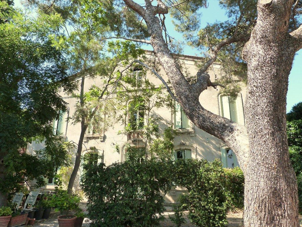 vente maison/villa 7 pièces OLONZAC 34210