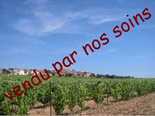 vente maison/villa 7 pièces LANGUEDOC-ST CHINIAN 34360