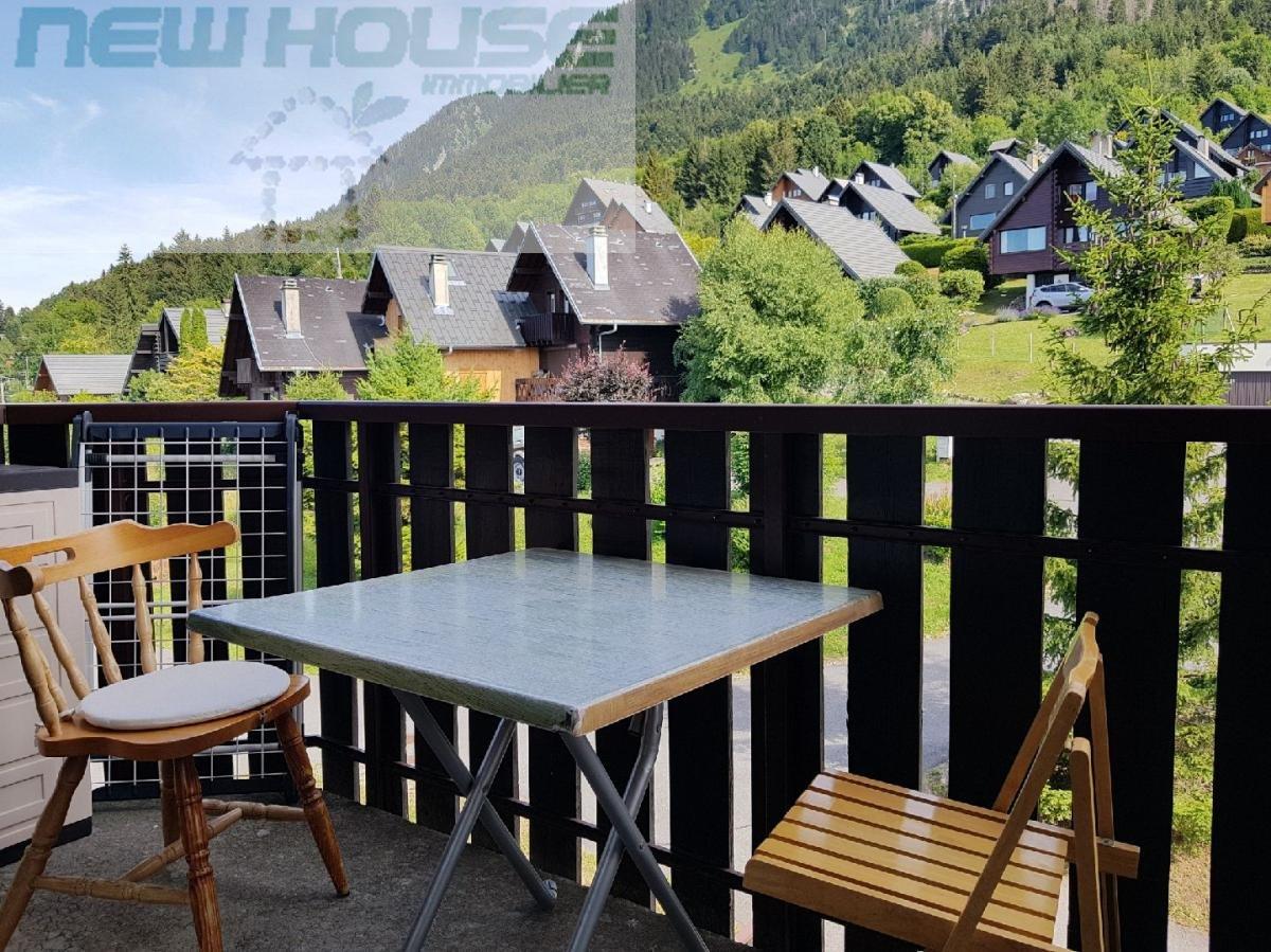 vente appartement 1 pièces THOLLON-LES-MEMISES 74500