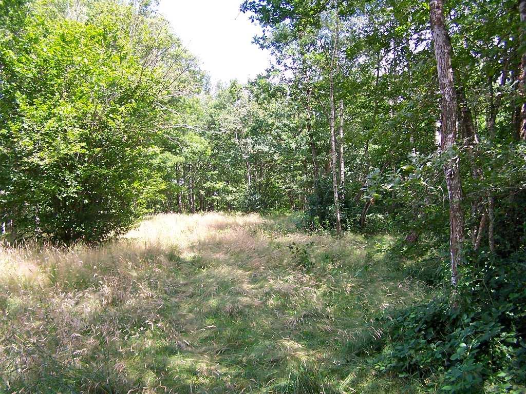 vente terrain CANET DE SALARS CANET DE SALARS 12290